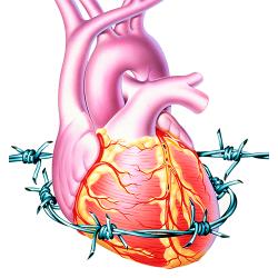 Colesterol și trigliceride