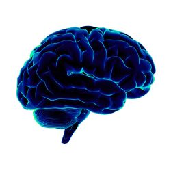 Memorie și concentrare