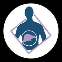 Steatoză hepatică