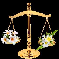 Echilibru hormonal feminin